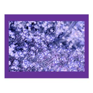 Lavender sparkly Fairy Flowers, template Postcard