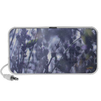 Lavender Mp3 Speaker