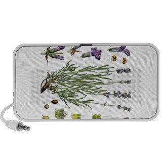 Lavender Laptop Speaker