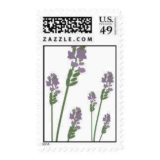 Lavender Sprigs illustration Postage