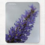 Lavender Storm Mouse Pad