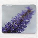 Lavender Storm Mousepad