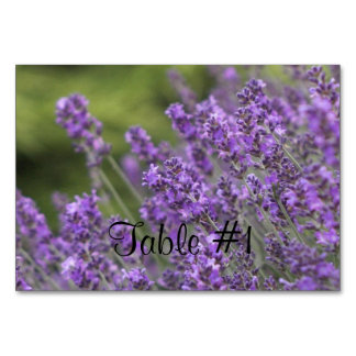 Lavender Table Cards