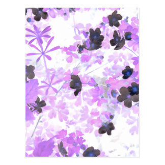 Lavender Thimble Weed Postcard