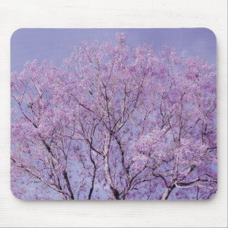 Lavender Tree Photograph Mouse Pad