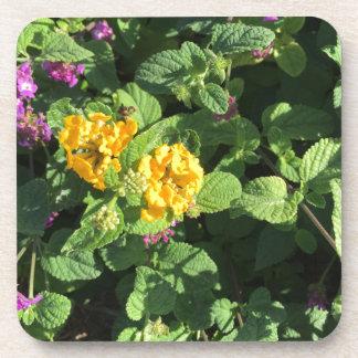 Lavender, yellow, orange, flowers beverage coaster