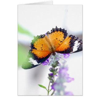 Lavendere y mariposa tarjeta de felicitación