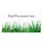Lawn Care & Landscaping Business Card Template