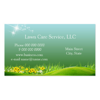 lawn_service_business2 Double-Sided standard business cards (Pack of 100)