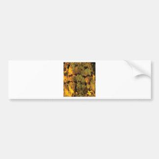 layer of yellow stones bumper sticker