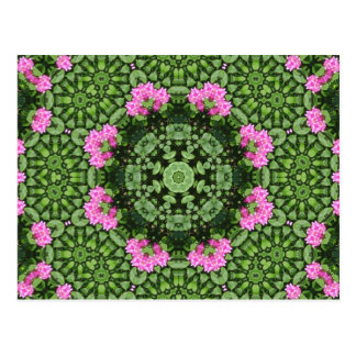 Layered Pink Lotus Mandala Postcards
