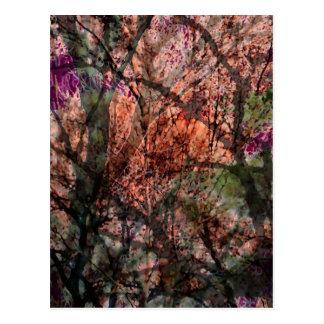 Layered Trees at Sunset Postcard