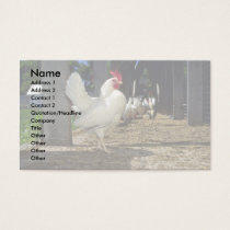 Layers (Hens And Roosters) Business Card