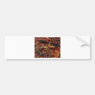 layers of colorful leaves bumper sticker