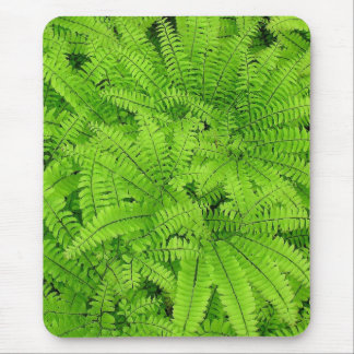 LAYERS OF FERNS, PHOTO, MOUSEPAD, MOUSEMAT MOUSE PAD