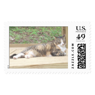 layin' on the deck postage stamps