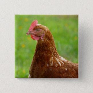 Laying Hen Rhode Island Red Chicken Button