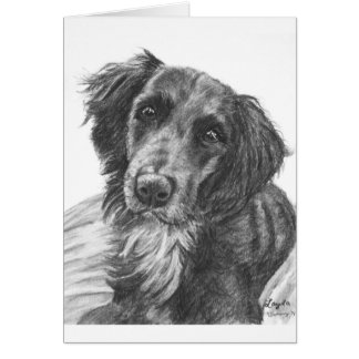 Layla the Border Collie Mix Charcoal Sketch Greeting Card