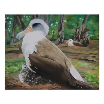 Hawaiian Themed Laysan Albatross and Chick Poster
