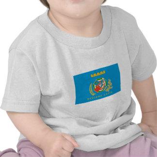Lazio flag shirt