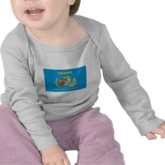 Lazio flag tee shirts