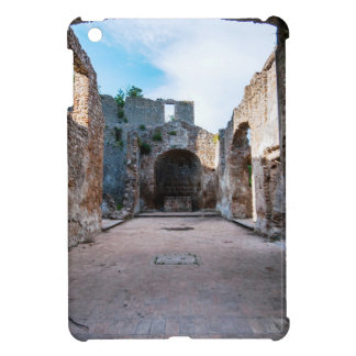Lazio iPad Mini Cases