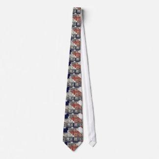 Lazo americano del dinero y de la bandera corbatas personalizadas