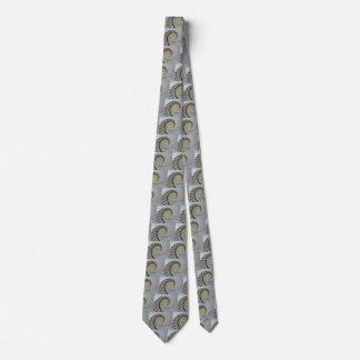 Lazo blanco de la escalera espiral corbatas