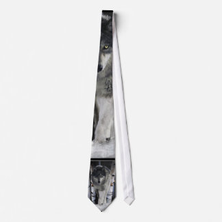 Lazo gris de la fauna del lobo del paquete corbata