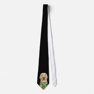 Lazo hermoso de Labrador Corbata
