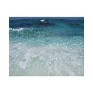 Lazo mexicano de la playa lona estirada galerías