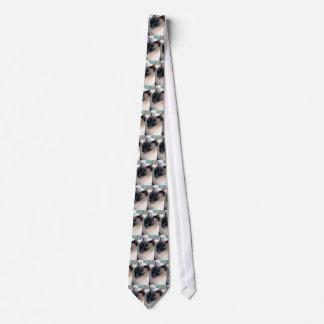 Lazo reservado del gato siamés corbata personalizada
