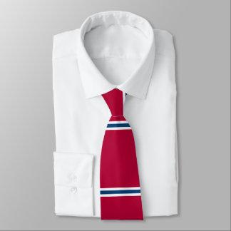 Lazo rojo con las rayas horizontales azules y corbata