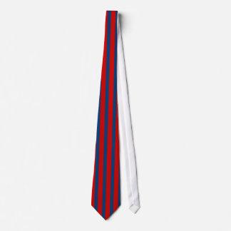 Lazo rojo y azul de la raya vertical corbata