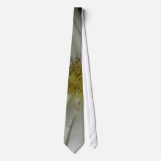 """Lazo subió """"molinillo de viento blanco"""" corbata"""