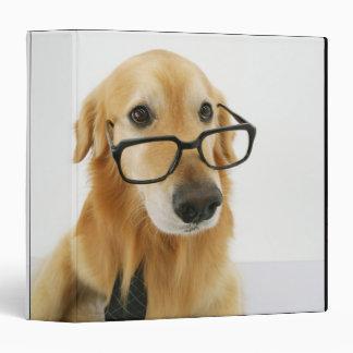 """Lazo y vidrios que llevan del perro que se sientan carpeta 1 1/2"""""""