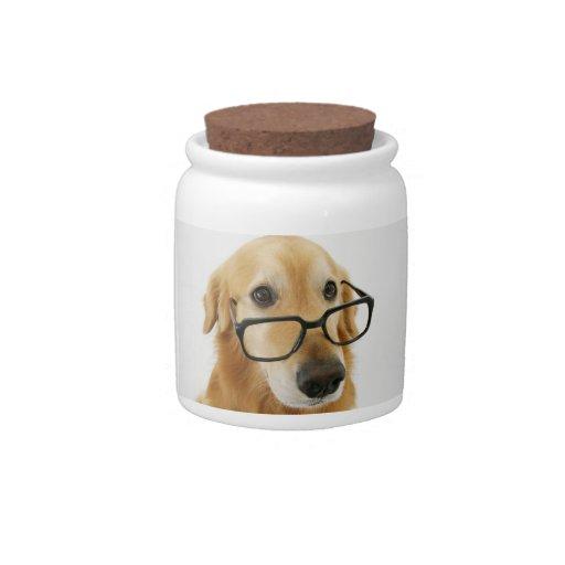 Lazo y vidrios que llevan del perro que se sientan plato para caramelo