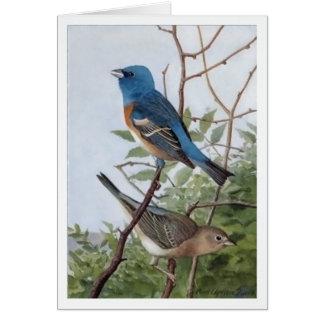 Lazuli Bunting Card