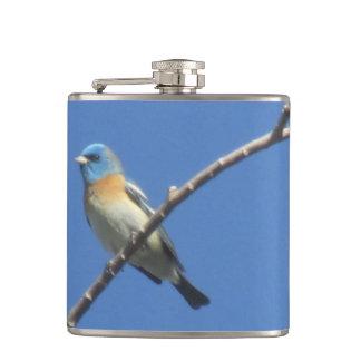 Lazuli Bunting Hip Flask