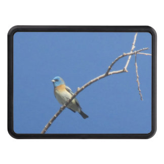 Lazuli Bunting Hitch Cover
