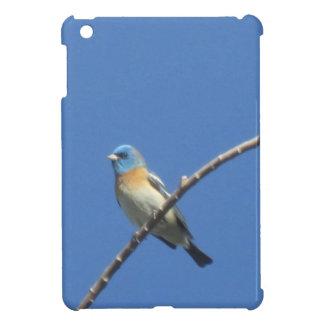 Lazuli Bunting iPad Mini Covers