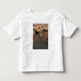 Lazuli Bunting (Passerina amoena) bathing in Toddler T-shirt