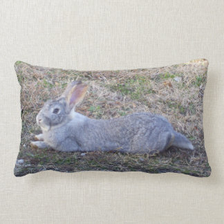 Lazy Bunny Pillow