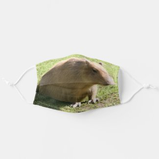 Lazy Capibara Cloth Face Mask