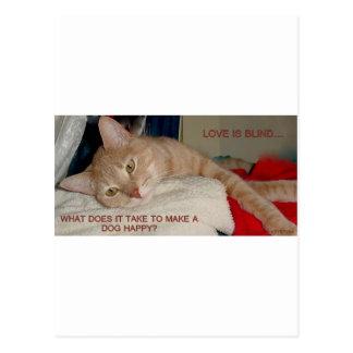 LAZY CAT 2 POSTCARD