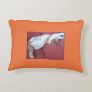 Lazy Cat Double Design Pillow Pink Orange