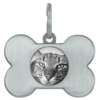 Lazy Cat Relaxing, black & white Pet ID Tag
