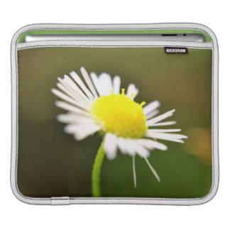Lazy Daisy | iPad Case