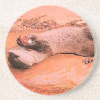 Lazy day Otter Coaster