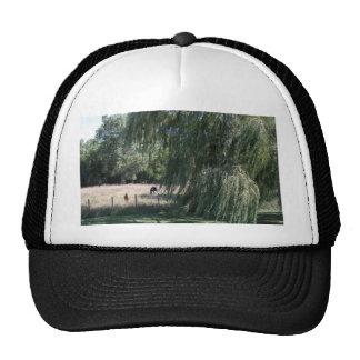 Lazy day trucker hats